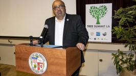 Adel at Tree Summit
